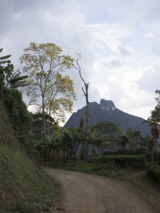 Hiking - Colombia Home4
