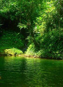 Hiking - Colombia Rutas Guarato Choco 1