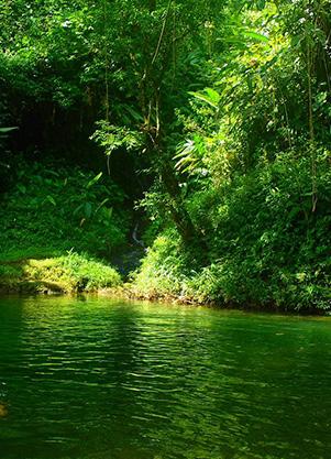 Santuario - Pueblo Rico - Guarato Chocó