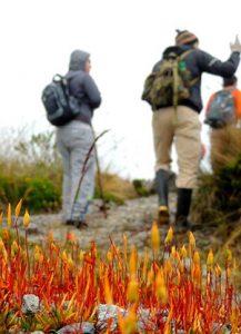 Hiking - Colombia Rutas Paramillo Quindio 3