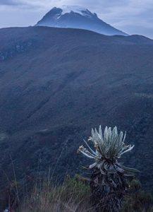 Hiking - Colombia Rutas Paramillo Quindio 4