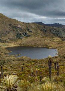 Hiking - Colombia Rutas Paramillo Quindio 5