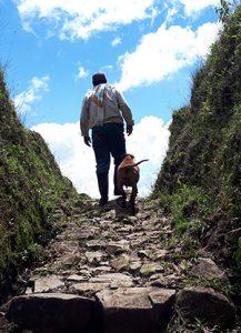 Hiking - Colombia Rutas San Antonio 1